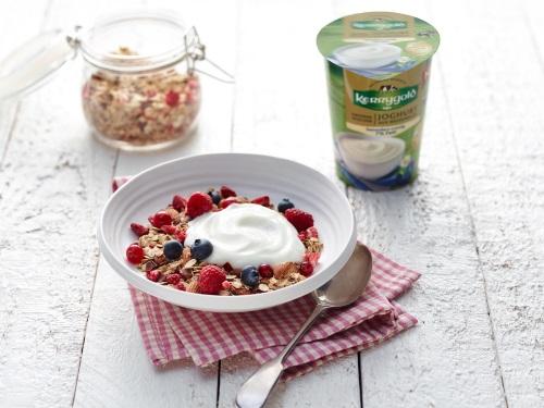 Werde Produkttester für die neuen Kerrygold Joghurts!